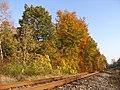 På sporet af efteråret - panoramio.jpg