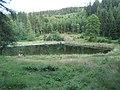 Přírodní koupaliště Vysoké nad Jizerou , 2007-07 - panoramio.jpg