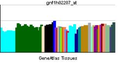 PBB GE IL1F8 gnf1h02207 ĉe tn.png