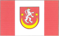 POL powiat bieszczadzki flag.png