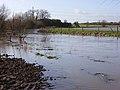 Padbury Brook in flood - geograph.org.uk - 337828.jpg