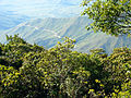 Paisaje de la Carretera a la Sierra.JPG