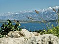 Paklenica Croatia.jpg