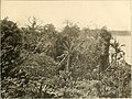 Panama and the canal in picture and prose (1913) (14596514738).jpg