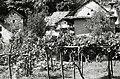 Paolo Monti - Servizio fotografico (Piedimulera, 1982) - BEIC 6354307.jpg