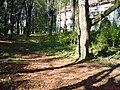 Parc 03 - panoramio.jpg