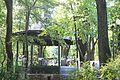 Parcul Copou (foisorul turcesc).jpg
