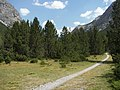Passo di Val Mora between Italy and Switzerland - panoramio.jpg