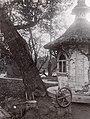 Pavlovsk old800 03619625910252d3cbf0b297465e072b.jpg