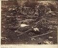 Pennsylvania, Gettysburg. A Sharpshooter's Last Sleep - NARA - 533314.tif