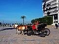 Phaeton in İzmir.jpg