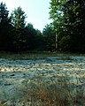 Piaski - panoramio (3).jpg