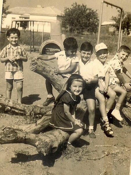 בגן הילדים על גזע עץ