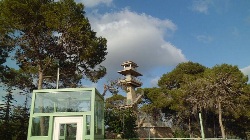 מגדל תצפית ביער עופר