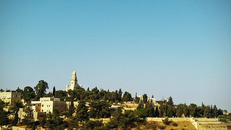 קיץ בירושלים - תצפית