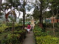 Plaza jardi San genaro.JPG