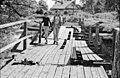 Pn-bridge-live-2001-02.jpg