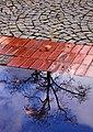 Poland 2011-10-08 (6605372925).jpg