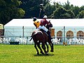 Polo players (2 of 3), Cirencester Park, Gloucestershire - geograph.org.uk - 2489750.jpg