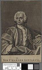 Charles Linnaeus