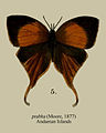 PrabhaMoore1877.JPG