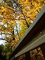 Praha, Jinonice, podzim a svodidlo.jpg