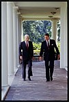 President Ronald Reagan walking and talking with Republican Senator John McCain of Arizona.jpg