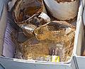 Pressegespräch Ausgrabungen in Archäologischer Zone Köln, Stand Juni 2014-1359.jpg