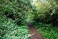 Public Bridleway near Hunt's Lane - geograph.org.uk - 261681.jpg