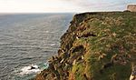 Puffin Point IMG 4599 (13943024761).jpg