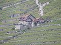 Puidoux, Switzerland - panoramio.jpg