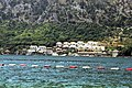 Put I Bokeljske Brigade, Dobrota, Montenegro - panoramio (1).jpg