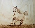 "Pyrography "" Te Stallion"".JPG"