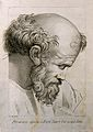 Pythagoras. Line engraving by D. Cunego, 1782, after R. Meng Wellcome V0004825.jpg