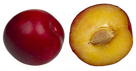 A plum; whole and split