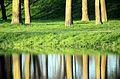 Reflections (5545726547).jpg