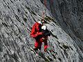 Rescue-helpers-60030 - Hans Braxmeier.jpg