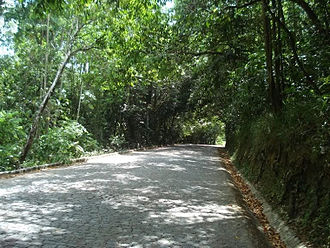 Saltinho Biological Reserve - Image: Reserva Biológica de Saltinho, Tamandaré PE