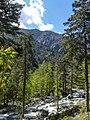 Restonica Gorge (35254632770).jpg