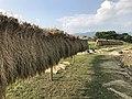 Rice drying in Yoshinogari Historical Park 2.jpg