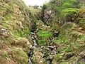 River, Carnalea - geograph.org.uk - 795722.jpg