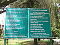 Road view to and from OOTY (204).JPG