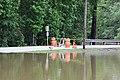 Roman Forest Flooding - 4-18-16 (26488880706).jpg