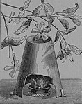 Rozrywki Naukowe Fig. 159.jpg