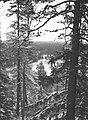 Sääksjärvi 1936.jpg