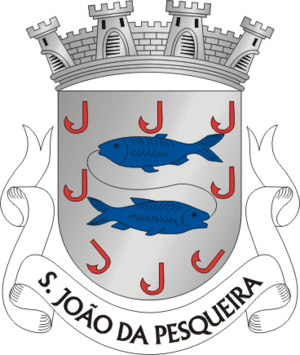 São João da Pesqueira - Image: SJP