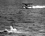 SOC Seagull taking off in Antarctica c1947.jpg