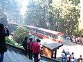 Sacred Tree Station06.jpg
