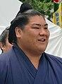 Sadanofuji 2010 Sept.jpg
