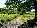 Saint-Geyrac ruisseau près Taupinies aval.JPG
